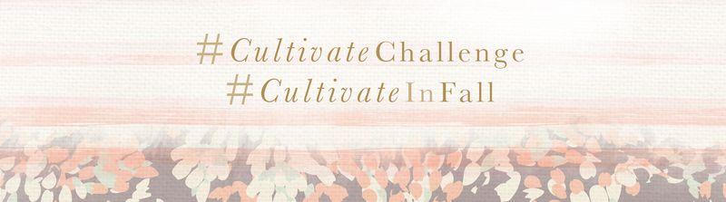 CultivateChallenge_bellow