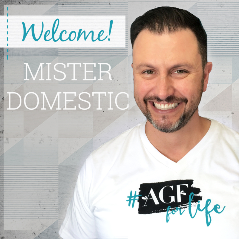 Mister Domestic Graphic