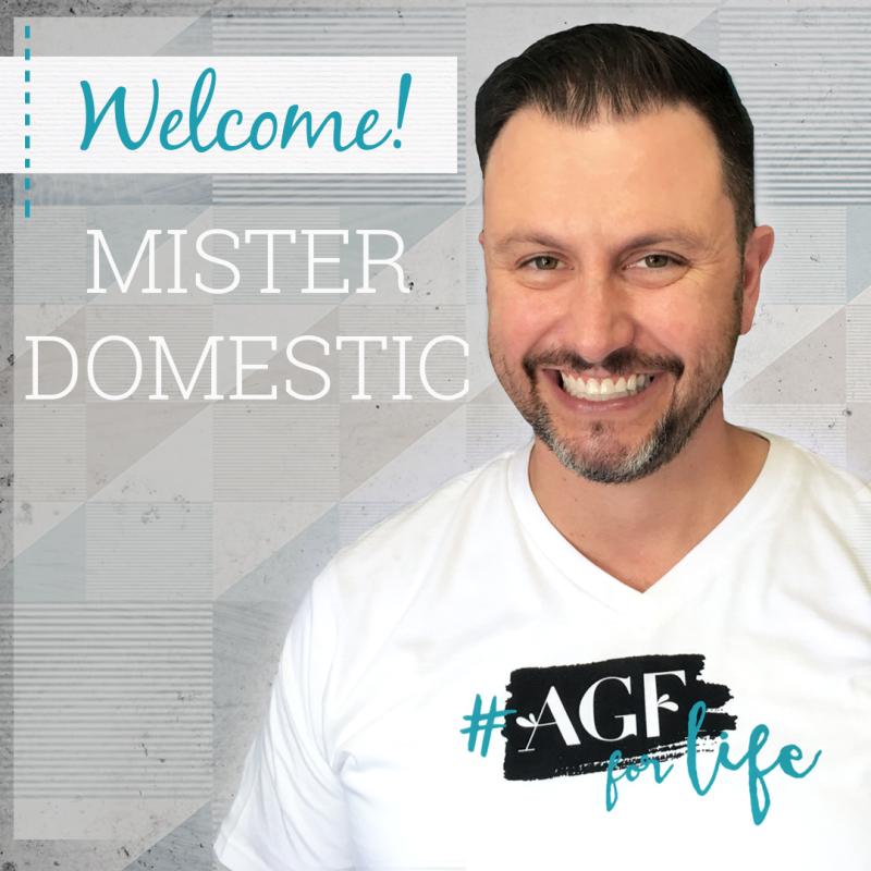 Mister Domestic Graphic