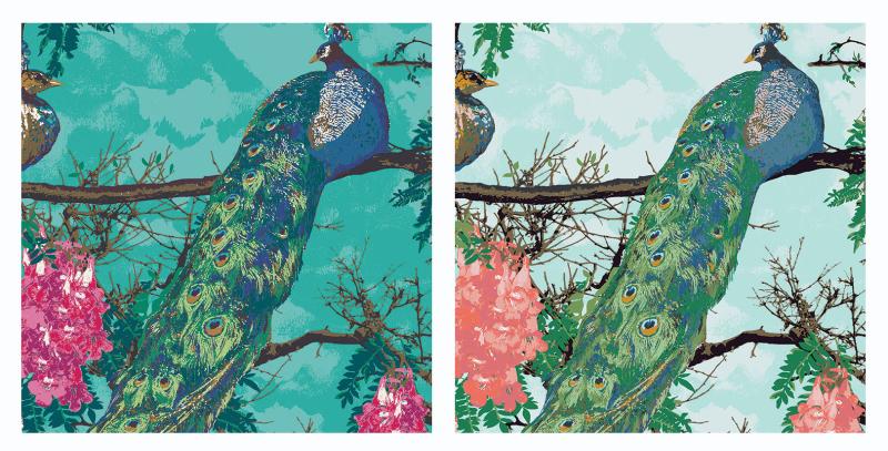 Peacock-fabrics