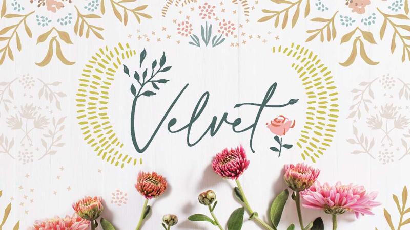 Velvet_banner BLOG